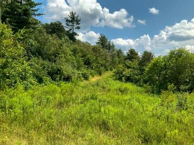 Brill Rd - 322 acres - Washington & Athens County