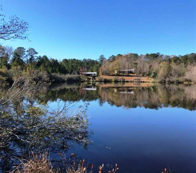 998 +/- Acres of Recreational and Timberland for Sale in Sumter County, Alabama