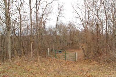 Shay Ridge Tract 1 - 48 acres Washington County