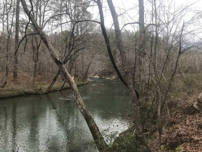 960 +/- Acres Jefferson Co., AL Great Timber, Recreation and Development Tract