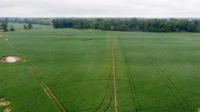 Nice Row Crop, 3 Wells, 2 Pivots, White River Frontage, Jackson County, AR