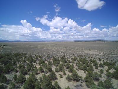 Cebolla Ranch