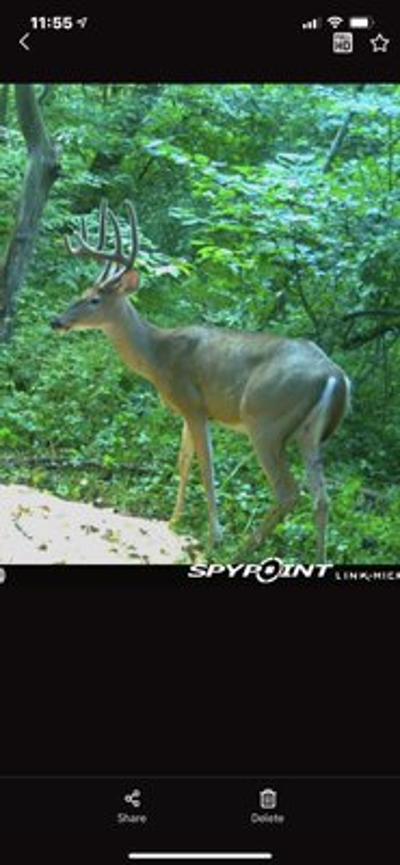 Robinson Hill Rd - 76 acres - Washington County